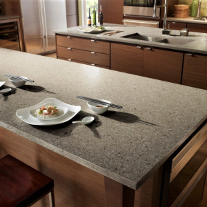 Silestone in Forest Snow